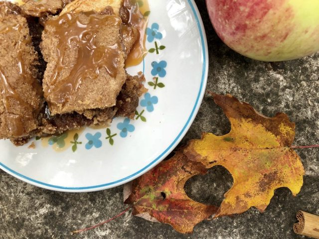 Apple Brownies -- Cinnamon and juicy apples make these moist brownies a perfect dessert, just add ice cream! | thatwhichnourishes.com