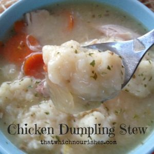 Chicken Dumpling Stew o-- This is what you want when you need true nourishment. Fluffy, seasoned dumplings swim over a rich, hearty chicken stew full of vegetables and goodness. | thatwhichnourishes.com