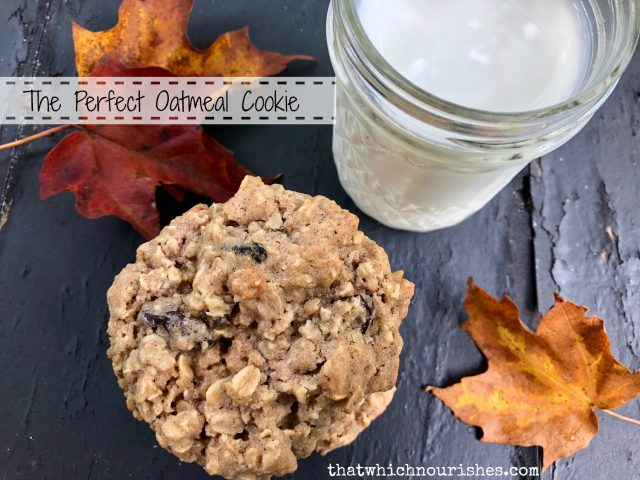 The Perfect Oatmeal Cookie -- This is exactly what you want in an oatmeal cookie! Chewy and full of spices like cinnamon and cloves, these beauties whip up in minutes and are perfect for dunking! | thatwhichnourishes.com