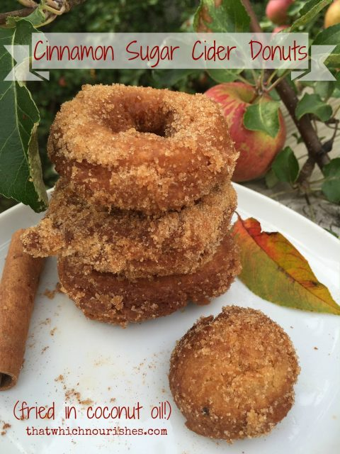 Cinnamon Sugar Cider Donuts -- Homemade cider donuts fried in coconut oil for all of the fall deliciousness without the guilt! | thatwhichnourishes.com