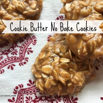 Cookie Butter No Bakes -- Cookie Butter No Bake Cookies have the classic oatmeal chew of no-bakes with a cinnamon-y, shorbread-y, delightful new flavor that will certainly make you a convert from traditional chocolate. | thatwhichnourishes.com