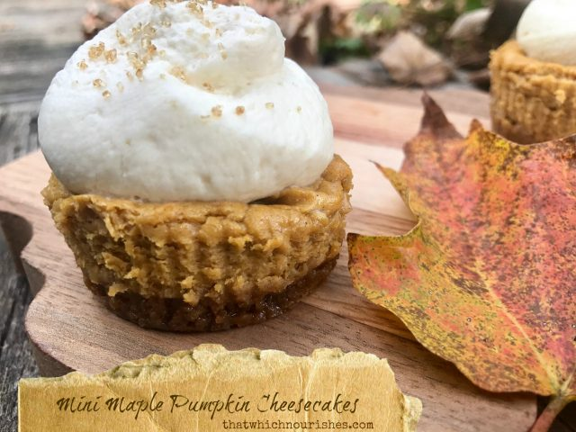 Mini Maple Pumpkin Cheesecakes -- Perfect little creamy maple pumpkin cheesecakes full of all the spices of fall layered over a ginger snap crust and topped with a maple whipped cream. | thatwhichnourishes.com