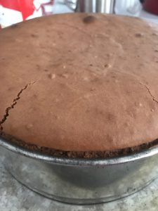 Steel Magnolia Chocolate Cherry Cheesecake -- A decadent and creamy chocolate cheesecake is encrusted with two kinds of buttery, chocolate crumbs and layered with cherries to make a delightful dessert for any special occasion.   thatwhichnourishes.com